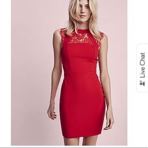 Red express lace dress